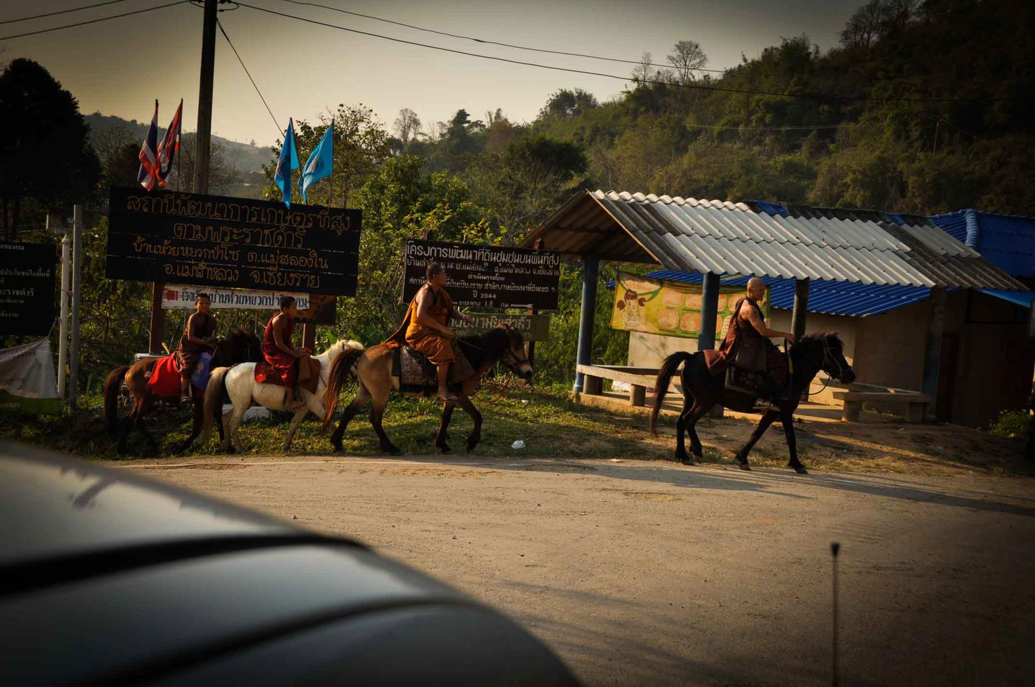 Observing the lifestyles of monks riding horses at the Golden Horse Monastery, Chiang Rai